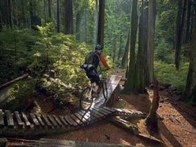 North Vancouver Trails